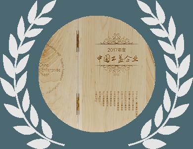 2017年度中国公益企业