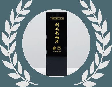 2017年度时代影响力大奖