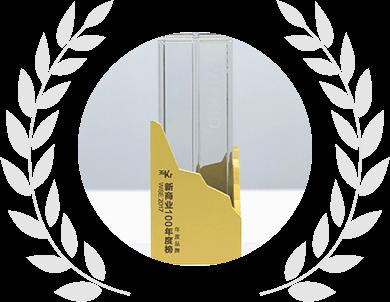 2017年度创新品牌
